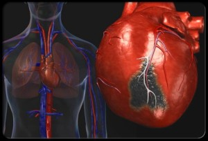 Internal Heart Image